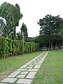 Botanic Gardens - panoramio.jpg