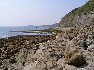 Bran Point - View west from Bran Ledge towards Redcliff Point
