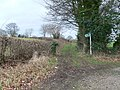 Bridleway off the A525 - geograph.org.uk - 676742.jpg
