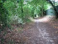 Bridleway to Carleton St Peter - geograph.org.uk - 1463524.jpg
