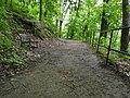 Brno, Wilsonův les (10).JPG