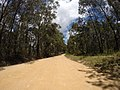 Brooman NSW 2538, Australia - panoramio (141).jpg