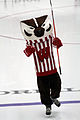 Bucky Badger ice hockey.jpg