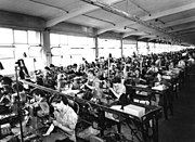 Bundesarchiv B 145 Bild-P008144, Kornwestheim, Salamander-Schuhfabrik
