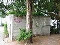 Bunker Arboretum.JPG