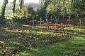 Burial ground, St Augustine's Priory - geograph.org.uk - 1614405.jpg
