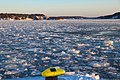Busy harbor becomes ice soup - panoramio.jpg