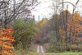 ButterMilk Falls Home of Mr. Rodgers - panoramio (92).jpg