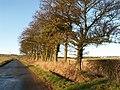 By Hatton Farm - geograph.org.uk - 103408.jpg