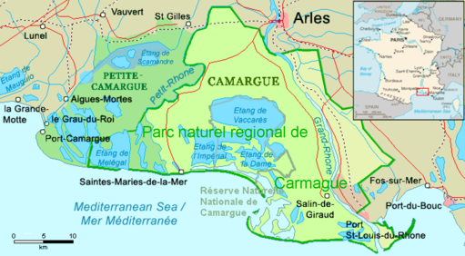 Camargue, Petite Camargue et Parc naturel reg