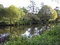 Camowen River - geograph.org.uk - 1532594.jpg