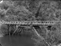 Car crossing a road bridge across the Mangahao River, near Mangahao ATLIB 308031.png
