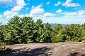 Carl Sandburg Home National Historic Site (cd7cb540-8c6b-4d3b-829e-6d8c1c0e4251).jpg