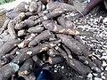 Cassava bunch in ososun, Nigeria.jpg