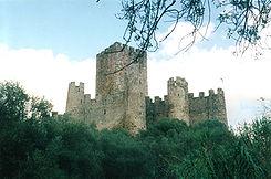 Castelo-de-Almourol vista-geral.jpg