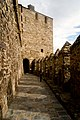 Castillo de Ponferrada y su interior.jpg