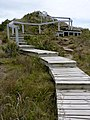 Castlepoint, Wellington Region, New Zealand (16).JPG