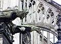 Cathedrale d'Amiens - Gargouille au menton.jpg