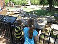 Cemetery, Jamestown Church, Historic Jamestowne, Colonial National Historical Park, Jamestown, Virginia (14238995508).jpg