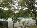 Central Park in Manhattan, New York City, United States of America (9861439026).jpg