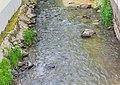 Ceor river in Cassagnes-Begonhes.jpg