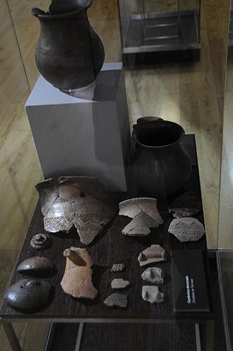Castro culture - Pottery from Terroso.