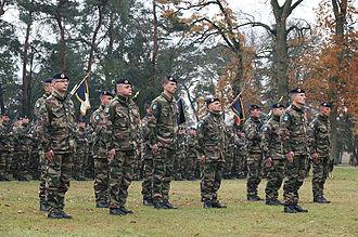 2nd Marine Infantry Regiment - Image: Ceremonie de creation du battle group richelieu