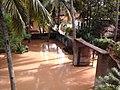 Chandakuda, Odisha 755006, India - panoramio (11).jpg