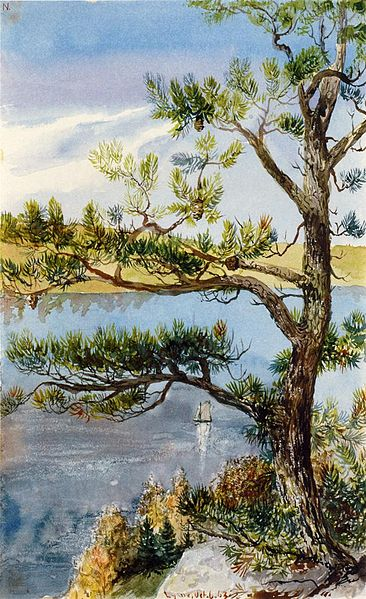 File:Charles De Wolf Brownell - Tree and Sailboat, Lyme, Connecticut.jpg