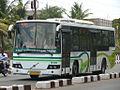 Chennai bus.jpg