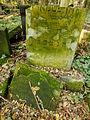 Chenstochov ------- Jewish Cemetery of Czestochowa ------- 182.JPG
