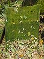 Chenstochov ------- Jewish Cemetery of Czestochowa ------- 199.JPG
