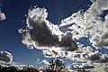 Chigwell Meadow Essex England - cumulus clouds.jpg