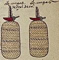 Chilli tribute from Tuchpa Codex Mendoza 52r detail.jpg