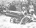 Chinese soldiers with US cannon.jpg