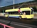 Chomutov, autobusové nádraží, Solaris Trollino 12.jpg