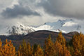 Chugach Mountains from Anchorage.jpg