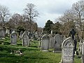 Church Cemetery - geograph.org.uk - 1196463.jpg