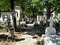 Cimitirul Bellu 21.jpg