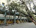 Classroom Pavilion - Polytechnic University of Puerto Rico - DSC07169.JPG