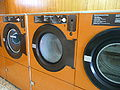 Clothes dryer P1040954.jpg