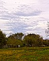 Clouds and Trees (6781013384).jpg