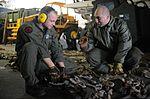 Composite Training Unit Exercise 131203-N-AO823-062.jpg