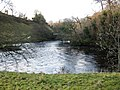 Confluence of the River Balder and the River Tees - geograph.org.uk - 1592815.jpg