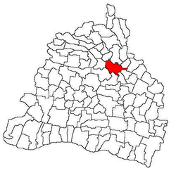 Location in Dolj County