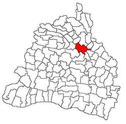 vị trí của Craiova