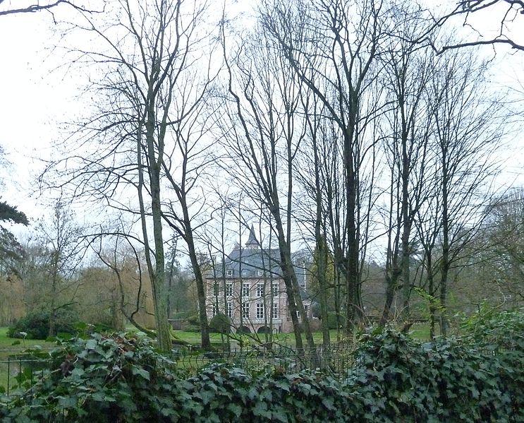 File:Croix.- Château la Fontaine.jpg