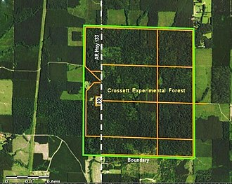 Crossett Experimental Forest - Aerial view of Crossett Experimental Forest boundary and road system