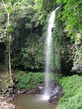 Dorrigo National Park - Image: Crystal Falls