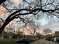 Cul-de-sac at twilight with tree 02.jpg